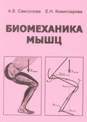 Биомеханика мышц